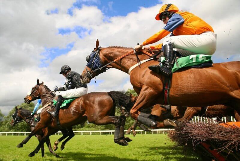 KY Online Horse Betting