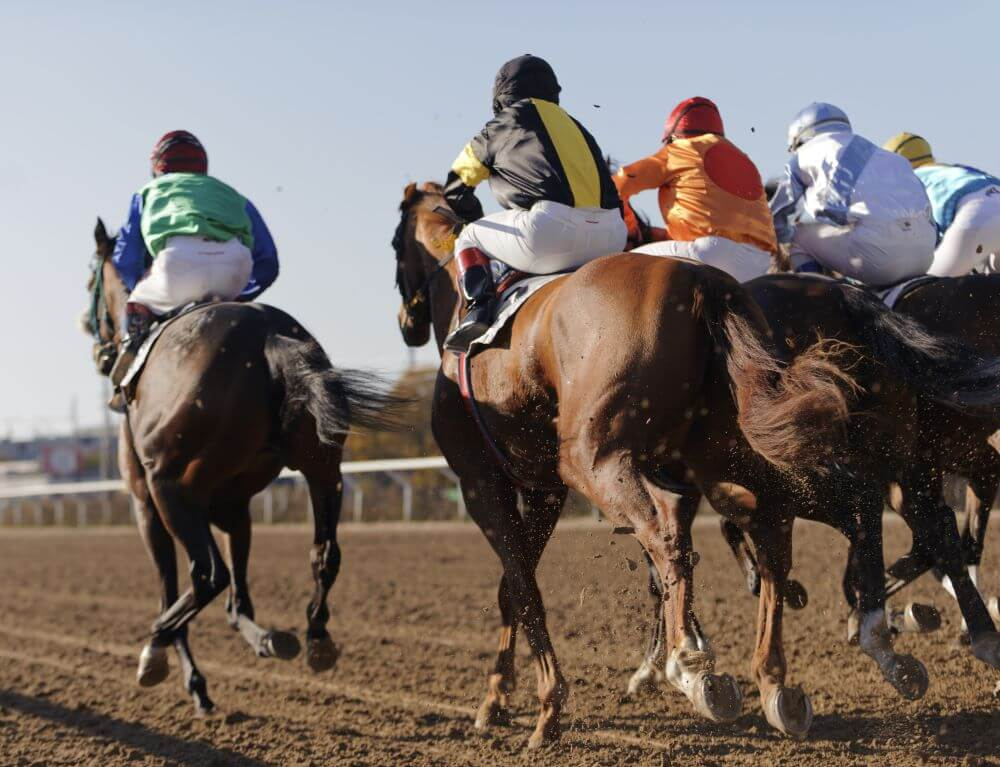 Kentucky Derby Horses